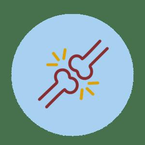 Gewrichten, spieren en botten